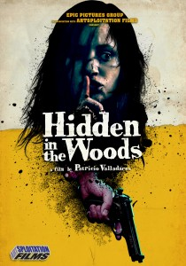 hidden in the woods cover